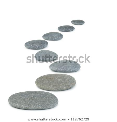 Gri taşlar adımlar deniz üç otlar Stok fotoğraf © mariephoto