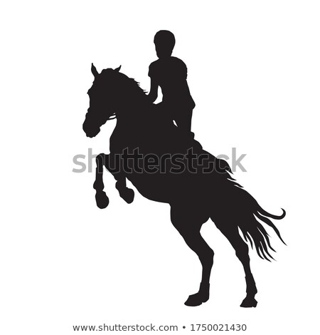 Show Jumper Stock photo © songbird