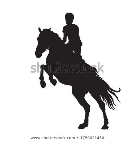show · acrobatiek · grijs · paard · dier - stockfoto © songbird