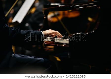 Zongorista sziluett naplemente férfi természet koncert Stock fotó © adrenalina