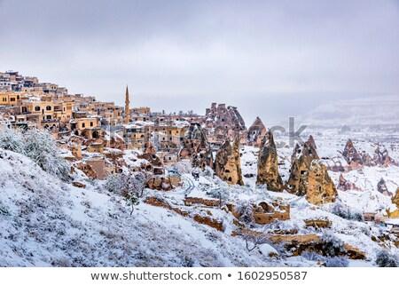 洞窟 美しい 冬 風景 ツリー 雪 ストックフォト © Nejron