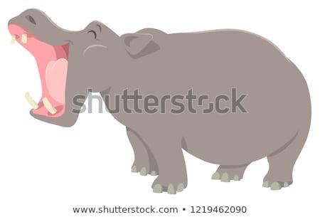 Nijlpaard cartoon illustratie landschap reizen leeuw Stockfoto © adrenalina