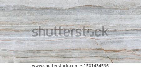 Decorative Figured Brown Pavement Slabs. Stock photo © tashatuvango