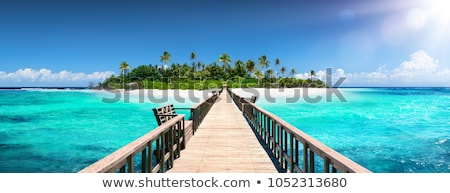 Paradis île palmiers bateaux vecteur arbre Photo stock © -Baks-