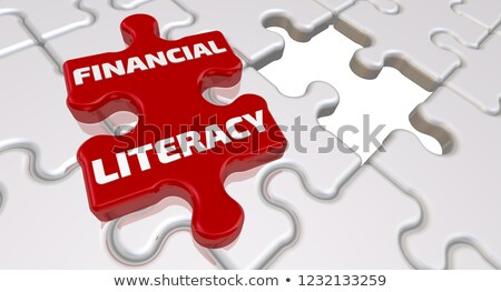 Financial Literacy on Red Puzzle. Stock photo © tashatuvango