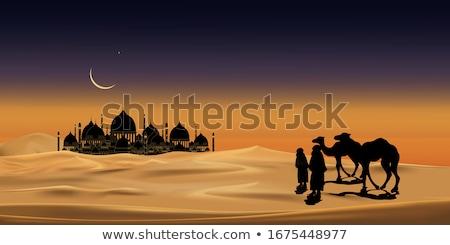 Teve mecset illusztráció természet templom homok Stock fotó © adrenalina
