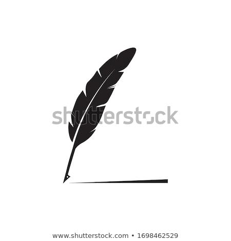 Libro pluma pluma símbolo diseno escuela Foto stock © blaskorizov
