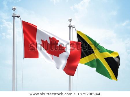 mensen · vlag · Jamaica · geïsoleerd · witte · menigte - stockfoto © istanbul2009