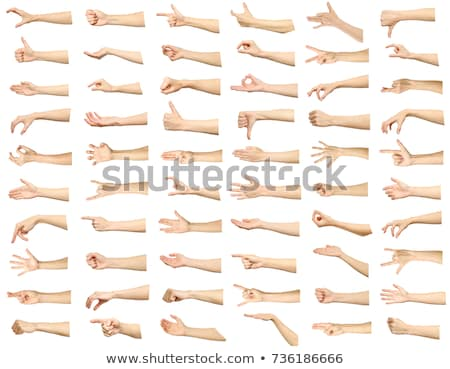 Femminile mano manicure viola bianco Foto d'archivio © RuslanOmega