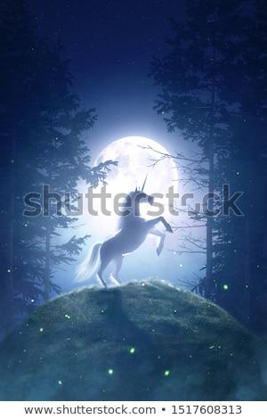 Stock fotó: Holdfény · illusztráció · naplemente · sziluett · gyönyörű · fantázia