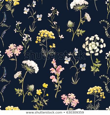 Floral pattern with vintage pansies flower Stock photo © netkov1