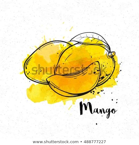 Mango food label on white Stock photo © bluering