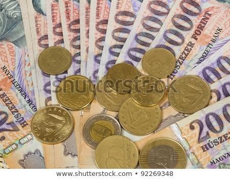 Old hungarian money stock photo © berczy04