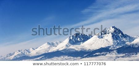 himalaia · alto · montanha · paisagem · panorama · azul - foto stock © vanzyst