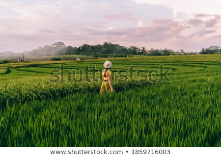 Cropped image of woman near the shrub Stock photo © deandrobot