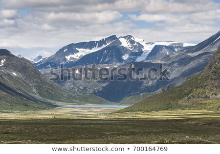 small fjord in noway near the valdresflya road Stock photo © compuinfoto