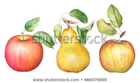 rode · appel · peer · geïsoleerd · witte · appel · vruchten - stockfoto © digitalr