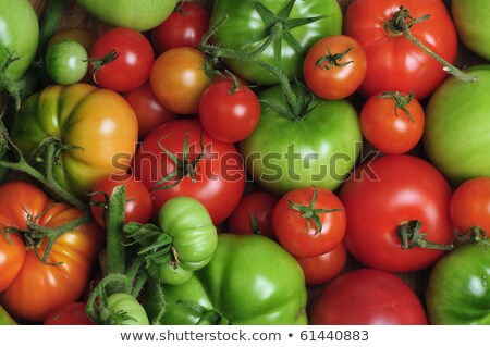 different sort of tomatoes Stock photo © M-studio
