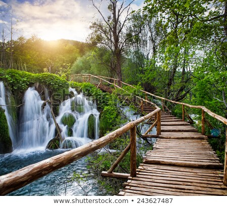 Waterfalls in the sunshine in Plitvice National Park Stock photo © vwalakte