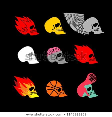 Czaszki zestaw godło głowie szkielet ognia Zdjęcia stock © popaukropa