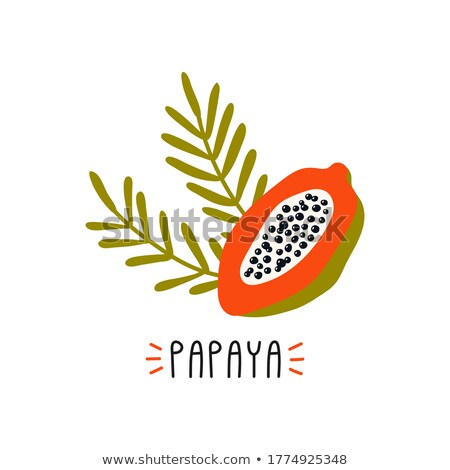 Papaya Exotic Fruit Vector Poster Text Palm Leaves Stock photo © robuart