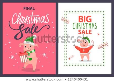 большой окончательный Рождества продажи плакат свинья Сток-фото © robuart