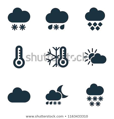 sneeuwval · sneeuwstorm · gestileerde · abstract · illustratie · deuren - stockfoto © angelp