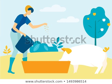Farmer Woman and Pig in Hands Vector Illustration Stock photo © robuart