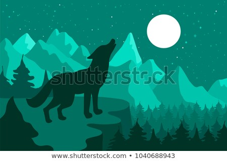 Wolf in the night coniferous forest near the mountains under moon Stock photo © barsrsind