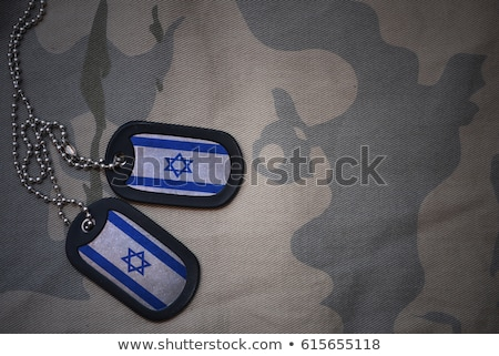 zászló · Izrael · integet · szél · rendkívül · részletes - stock fotó © hypnocreative