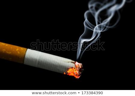 сжигание · сигарету · иллюстрация · конец · белый · здоровья - Сток-фото © vectomart