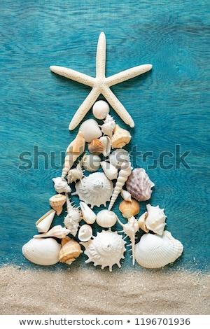 starfish arrangement stock photo © prill