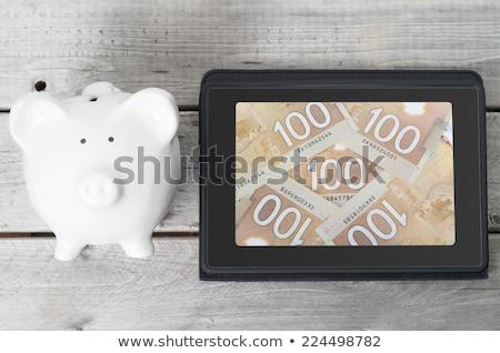 hombre · dinero · portátil · Screen · aislado · blanco - foto stock © ozaiachin