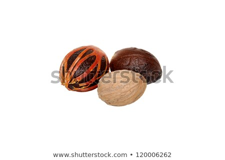 Three whole nutmegs - covered in mace, in case and seed Stock photo © sarahdoow