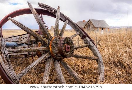 elhagyatott · préri · öreg · ház · gazdálkodás · gép - stock fotó © rhamm
