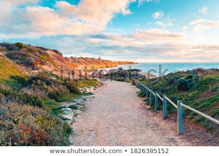 Stockfoto: Strand · track · abstract · australisch · kust