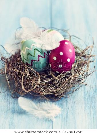Ovos de páscoa feno conjunto colorido cópia espaço projeto Foto stock © filipw