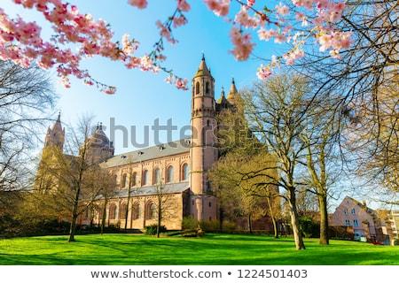 Katedral mistik manzara içinde şehir Bina Stok fotoğraf © prill