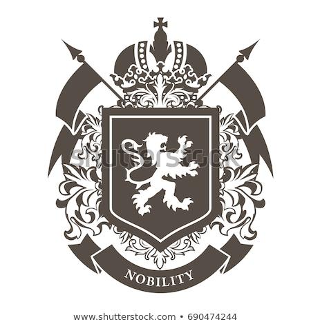 Luxury Coat of Arms stock photo © BibiDesign