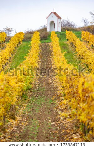 Stock photo: God's torture with vineyard, Southern Moravia, Czech Republic