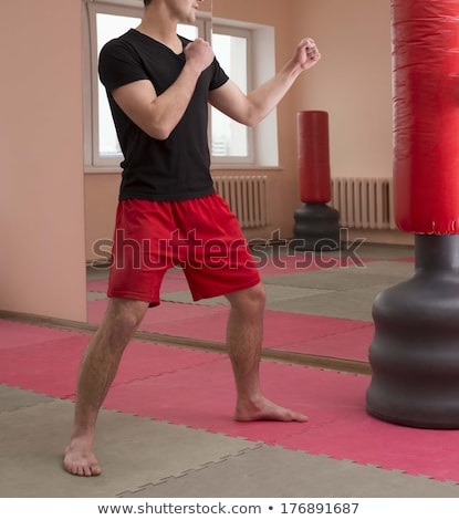athletic attractive man wearing boxing gloves on the white stock photo © vlad_star