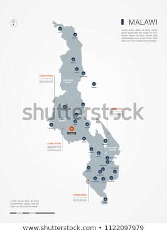 orange button with the image maps of malawi stock photo © mayboro