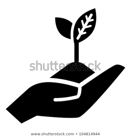 Green Thumb Gardening Planting Trees Flowers Stock photo © iqoncept