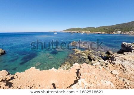 Es Pou des Lleo cove in Ibiza Island, Spain Stock photo © nito