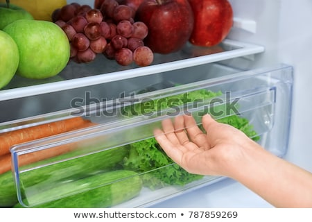 various refrigerators stock photo © ozaiachin