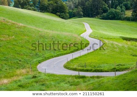 Path between green fields Stock photo © CaptureLight
