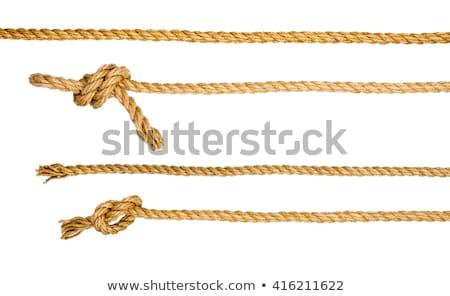 Ship rope isolated on white background Stock photo © cherezoff