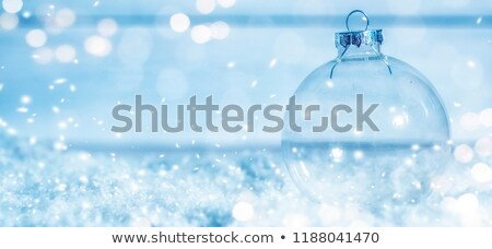 Photo stock: Silver Snow Globe With Miniature White Christmas Trees
