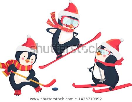 пингвин · изолированный · белый · вектора · спорт - Сток-фото © grivina