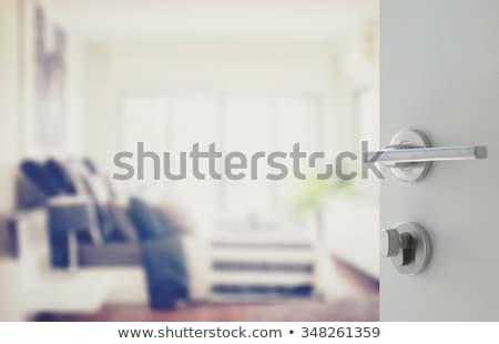 Kamer Open deur lege plaats inhoud 3d illustration Stockfoto © cherezoff